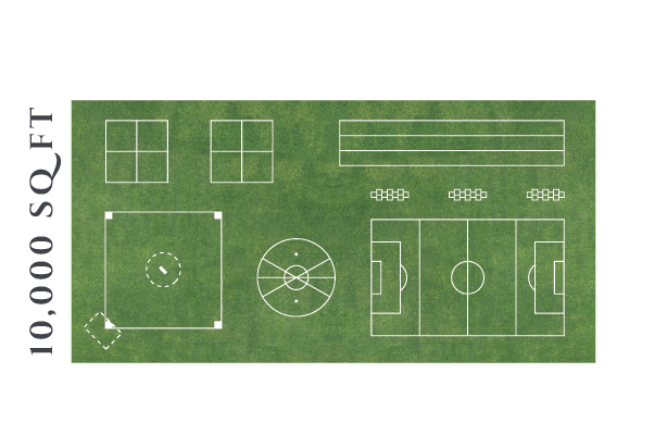 10000 square foot Field