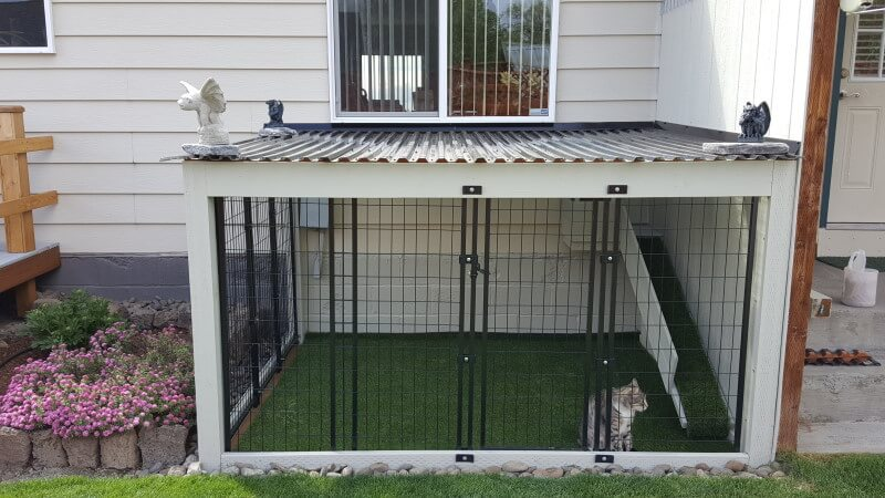 cat in a backyard spacious cage that has artificial turf