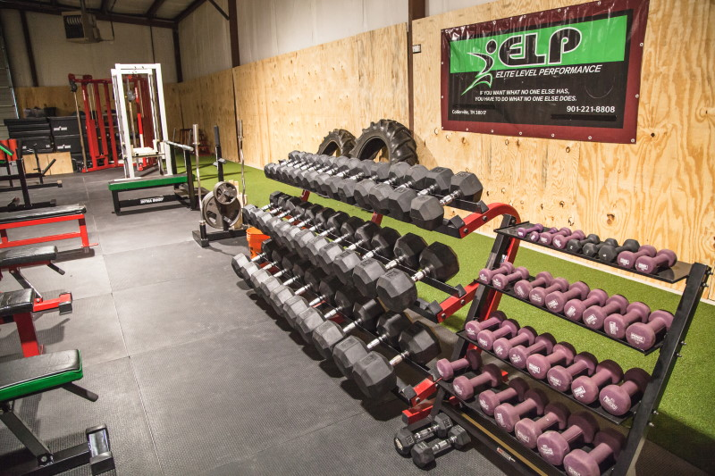 ELP indoor grass for exercise and training