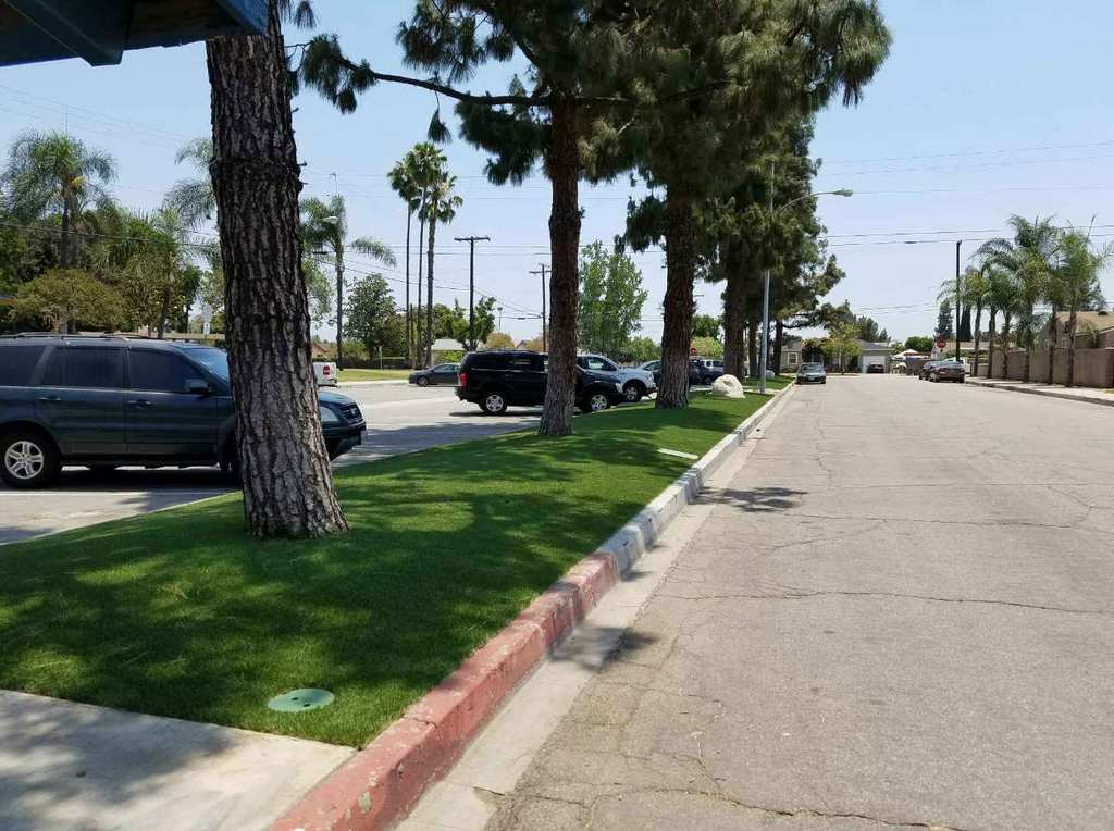 Eco Workz Artificial turf on side of road