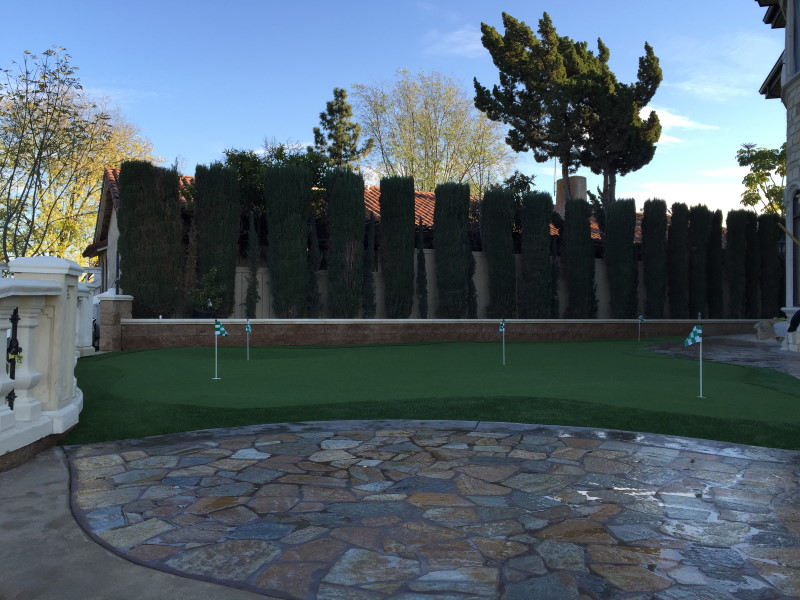 putting green surrounded by fence and hedges