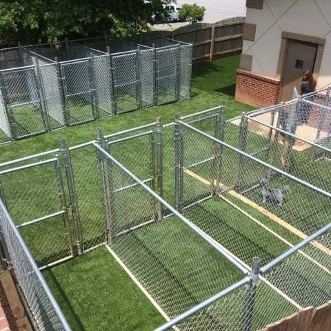 Kennel with artificial turf