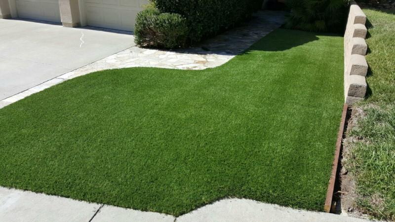 Tom Thompson grass installation project