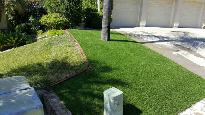 Tom Thompson tree next to garage surrounded by artificial grass