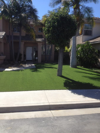Unas front yard with trees and fake grass