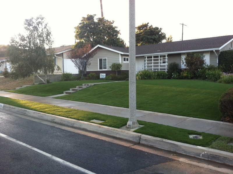 Victory Blvd. artificial turf in yard and next to sidewalk