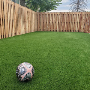 Artificial Grass with Wood Fence in Denver