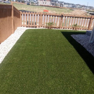 Fake Grass Small Yard in Denver