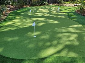 Closeup of large putting green in Charleston