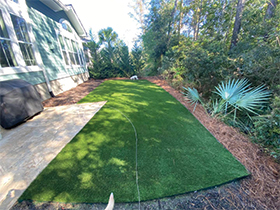 Charleston pet friendly synthetic lawn