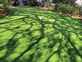 Backyard putting green Charleston, SC