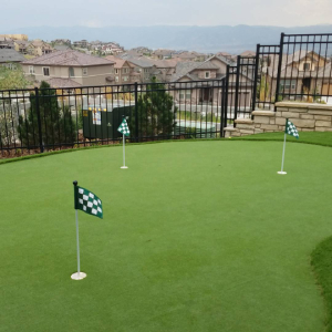 Putting Green Mountain View in Denver