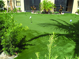 artificial golf green windermere, fl