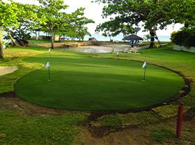 large artificial golf green winter garden fl
