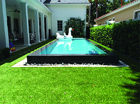 Artificial lawn around raised pool in Belle Isle, FL