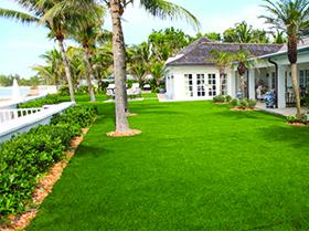 Residential artificial turf in Winter Garden, FL
