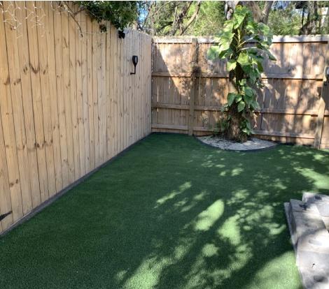 Backyard fence turf
