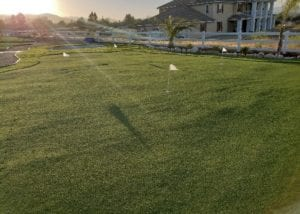 Turf lumps because of weak backing found in imported artificial turfs.