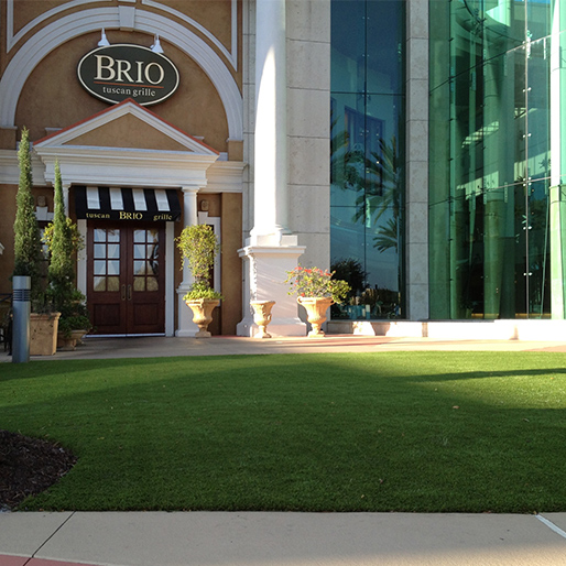 commercial artificial grass installation at Brio restaurant common space